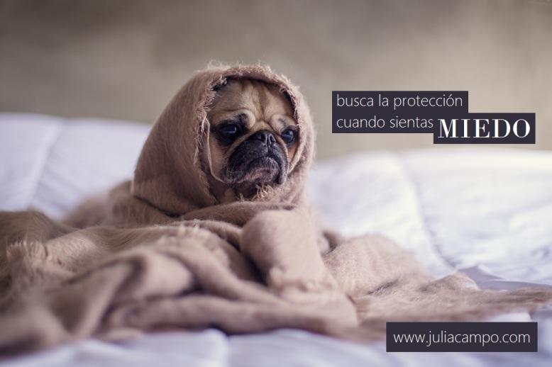 miedo_juliacampo-com_psicologia-sexologia-fertilildad_barcelona-tiana